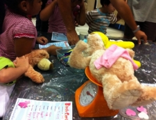 Teddy Bear Making - Kids Short Courses and Holiday Program