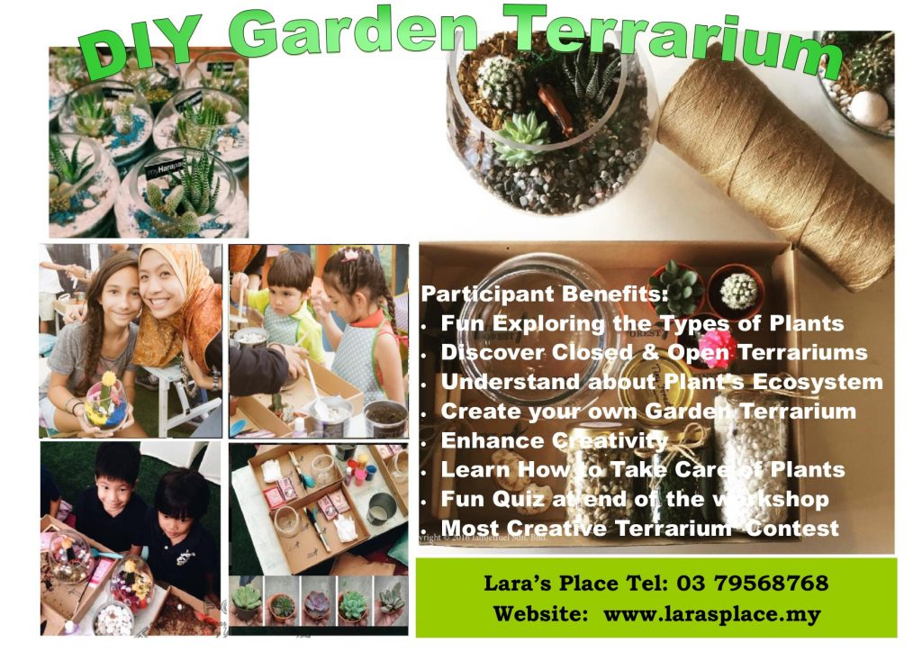 Shp Diy Garden Terrarium